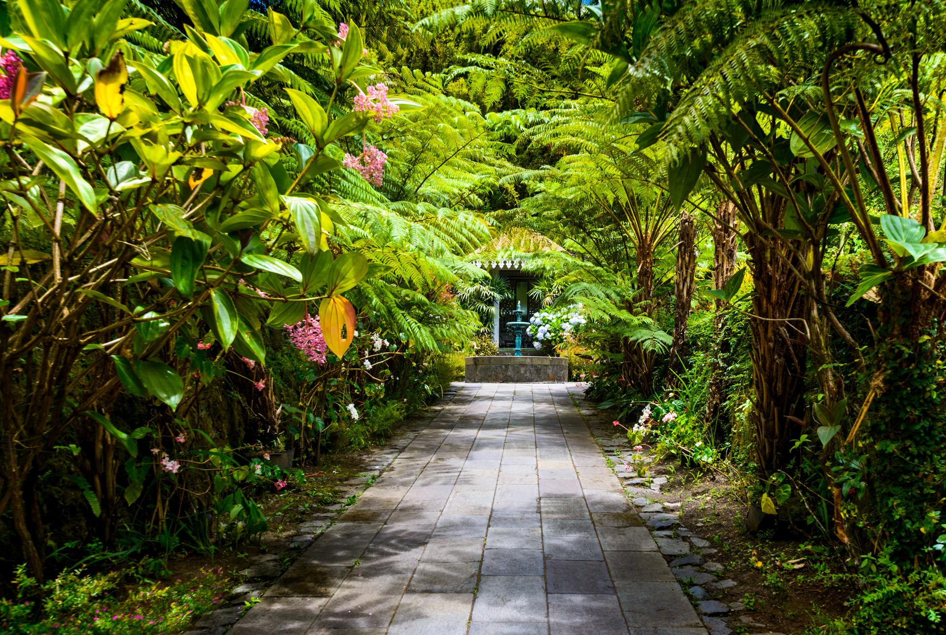 Agence immobilière à saint pierre et saint denis - Nord et Sud de la Réunion - Getim Immobilier